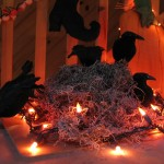 crows in a nest with lights