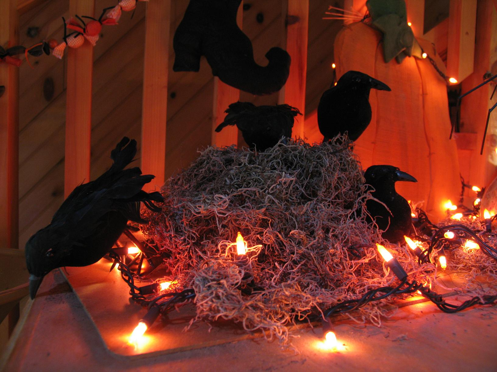 crows in a nest with lights - Halloween Crows
