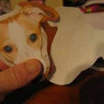 cut a piece of canvas fabric using your dogs face piece as a pattern