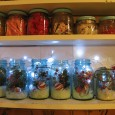 "<!-- AddThis Share Buttons above via filter on get_the_excerpt --> <div class=""at-above-post-arch-page"" data-url=""http://www.not2crafty.com/2010/12/mason-jars-filled-christmas-picks-lights-holiday-cheer/"" data-title=""Mason jars filled with Christmas picks,snow, and lights for holiday cheer!""></div>   This is a quick and easy decoration you can do in minutes.  I used some old blue mason jars but regular ones will look good too, especially with colored [...]<!-- AddThis Share Buttons below via filter on get_the_excerpt --> <div class=""at-below-post-arch-page"" data-url=""http://www.not2crafty.com/2010/12/mason-jars-filled-christmas-picks-lights-holiday-cheer/"" data-title=""Mason jars filled with Christmas picks,snow, and lights for holiday cheer!""></div><!-- AddThis Share Buttons generic via filter on get_the_excerpt --> <!-- AddThis Related Posts generic via filter on get_the_excerpt -->"