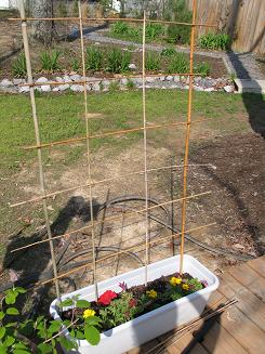 """<!-- AddThis Share Buttons above via filter on get_the_excerpt --> <div class=""""at-above-post-cat-page"""" data-url=""""https://www.not2crafty.com/2008/04/486/"""" data-title=""""Very easy and inexpensive bamboo trellis.""""></div>  This is a very easy trellis that is made with bamboo stakes. You can use the same basic idea with other materials for a different look. It's perfect for climbing [...]<!-- AddThis Share Buttons below via filter on get_the_excerpt --> <div class=""""at-below-post-cat-page"""" data-url=""""https://www.not2crafty.com/2008/04/486/"""" data-title=""""Very easy and inexpensive bamboo trellis.""""></div><!-- AddThis Share Buttons generic via filter on get_the_excerpt --> <!-- AddThis Related Posts generic via filter on get_the_excerpt -->"""